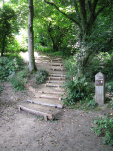 Smugglers Steps (lower)