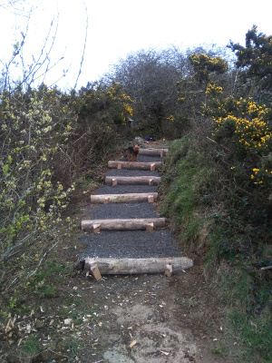 Quarry_steps_18-03-16